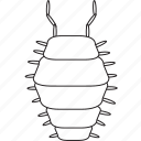 art, bug, bugs, bw, graphic, insect, pillbug icon