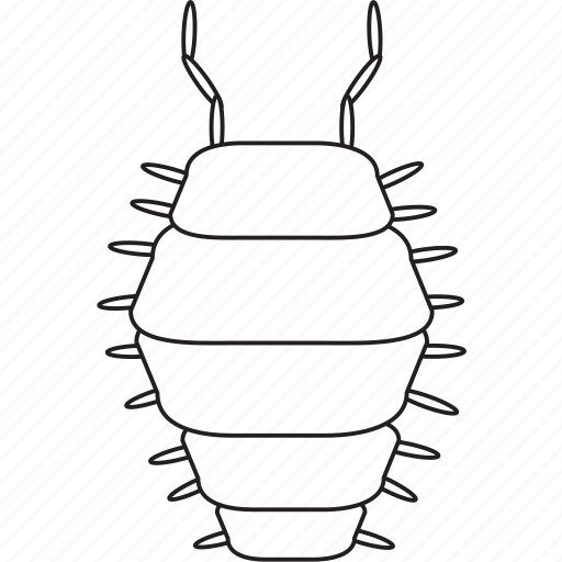 Bw, pillbug, art, bug, bugs, graphic, insect icon - Download on Iconfinder