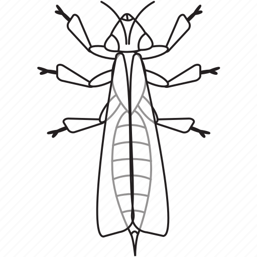 art, bug, bugs, bw, graphic, insect, wasp icon