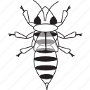 art, bee, bug, bugs, bw, graphic, insect icon