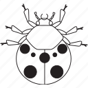 art, bug, bugs, bw, graphic, insect, ladybug icon