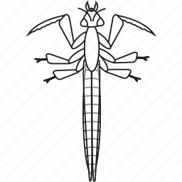 art, bug, bugs, bw, graphic, insect, mantis icon