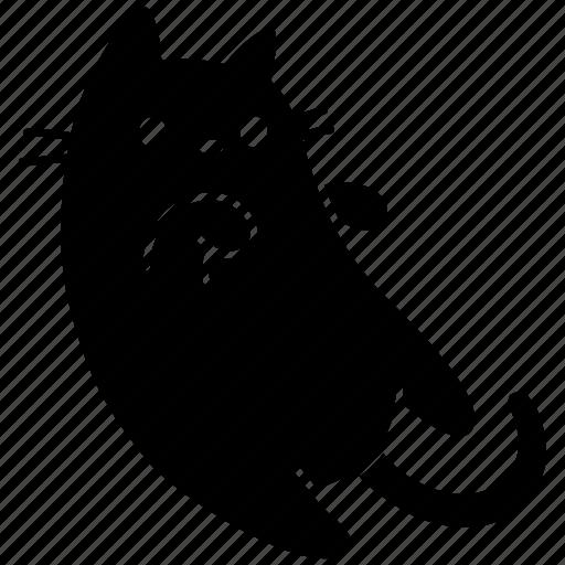 animal, cat, cute, feline, meow, pet icon
