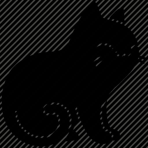 animal, cat, feline, happy, meow, pet, purr icon