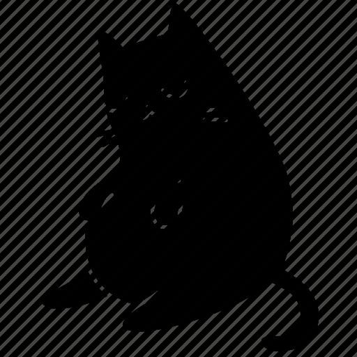 animal, cat, cute, fat, feline, meow, pet icon