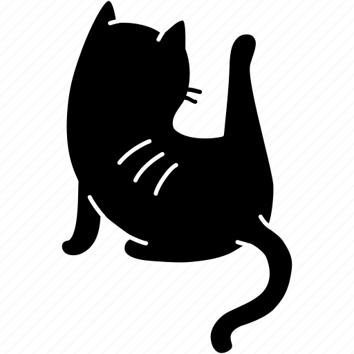 animal, cat, clean, cute, feline, meow, pet icon