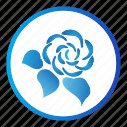 ecology, flower, leaf, nature, rose icon