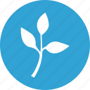 branch, plant, tree, twig icon