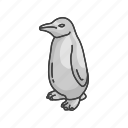 boardgames, games, monopoly, penguin, penguin monopoly, toy icon