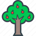 fruits, nature, plants, tree, wood icon