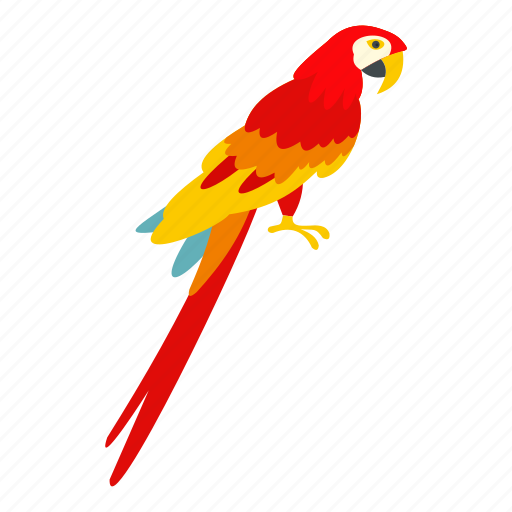 bird, brazil, feather, nature, parrot, tropical, wildlife icon