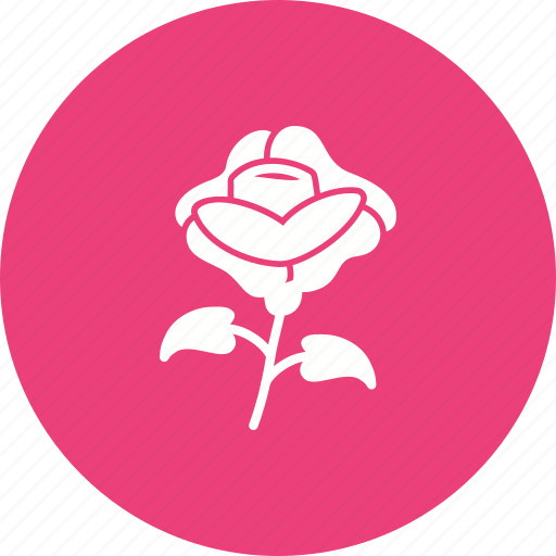 bouquet, death, flowers, grave, petals, roses icon