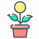 flower, growth, money, money growth icon
