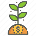 investment, money, plant, business