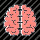 brain, brainstorm, idea, mind, think, thinking