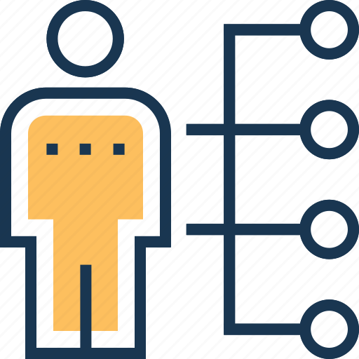 employee skills, hierarchy, leader, network, sitemap icon