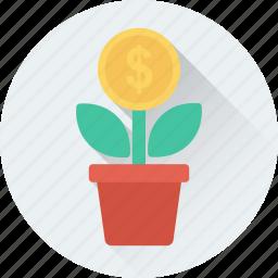 dollar plant, growth, investment, money plant, plant icon