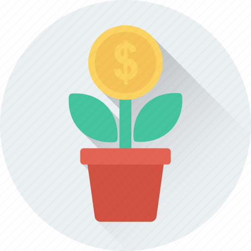 dollar plant, growth, investment, money plant, plant icon