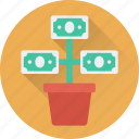 banknotes, growth, investment, money plant, plant icon