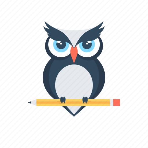 bird, education, owl, owl sage, wisdom icon