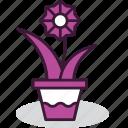 cosy, decor, decoration, flower, greenery, plant, pot icon