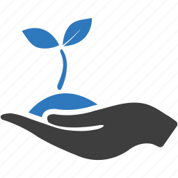 business startup, growth, hand, leaves, plant, project, startup icon