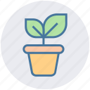 business growth, investment, leaf, office, plant, plant pot icon