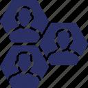 network, social cohesion, social media, team, team cohesion