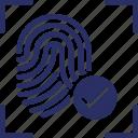biometric, identification, identity and correct, thumbprint, tick