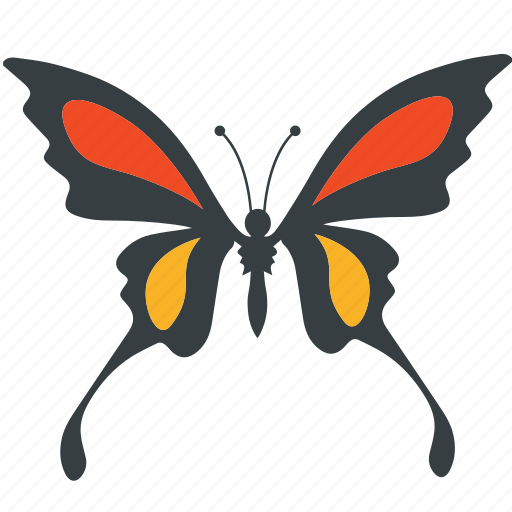 Animal, beauty, butterfly, fly, insect, nature, spring icon - Download on Iconfinder