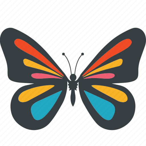 animal, beauty, butterfly, fly, insect, nature, spring icon