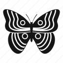 bug, butterfly, fly, logo, moth, spring, tattoo icon