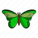 butterfly, cartoon, floral, great, logo, mormon, tattoo icon