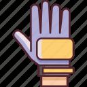 football, gloves, goalkeeper, goalkeeper gloves, soccer icon