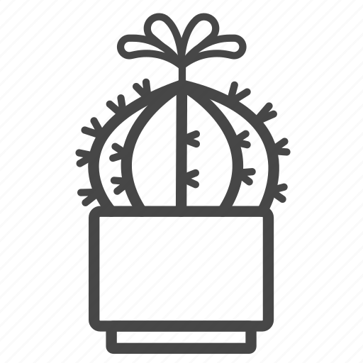 botany, cactaceae, cactus, plant, spines, succulent, tropical icon