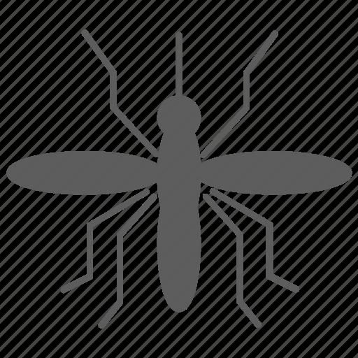 insect, mosquito, nature, virus, zika icon