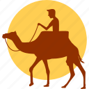 animal, camel, desert, horse, ride, riding, wild icon