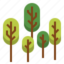forest, landscape, nature, outdoor, park, plant, tree icon
