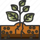 forest, garden, green, herb, leaf, nature, plant icon