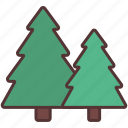 camping, forest, nature, outdoor, pine, trees, vacation icon