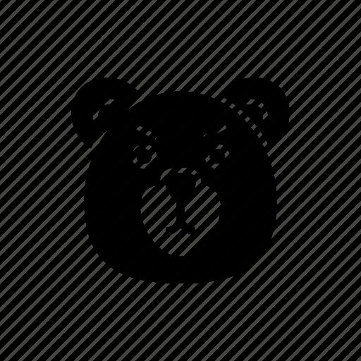 animal, bear, face, grizzly, pet, polar bear, wild icon