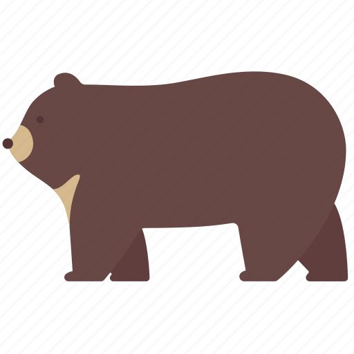 animal, bear, camping, forest, nature, travel, wildlife icon