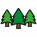 forest, nature, pine, plant, tree, trees icon