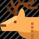 alpine, arctic, canada, deer, mood, reindeer, wild