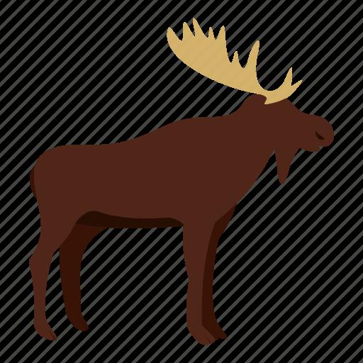animal, antler, deer, mammal, moose, nature, wildlife icon
