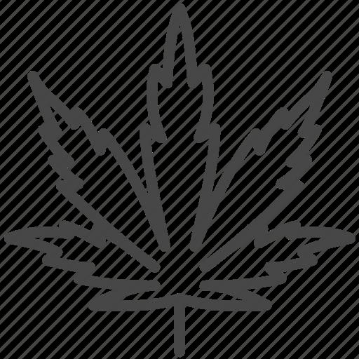 cannabidiol, cannabis, cbd, leaf, marijuana, plant icon