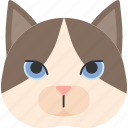 animal, breed, british, cat, pet, purebred, snowshoe icon