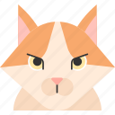 animal, breed, cat, pet, purebred, turkish, turkish van icon