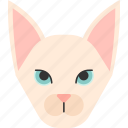 animal, breed, cat, pet, purebred, shorthair, sphynx icon