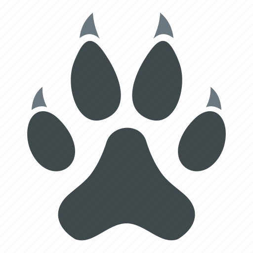 animal, background, bear, cat, long, paw, trail icon